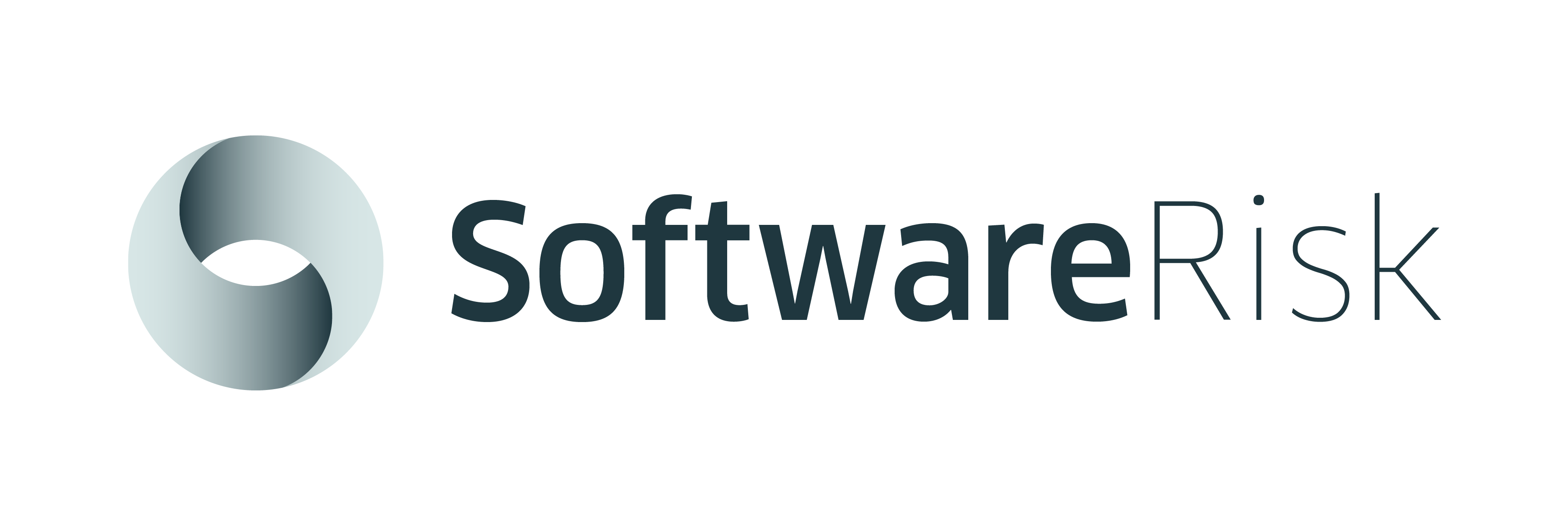 Software Risk logos_all versions-02